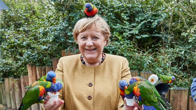 В это воскресенье решится кто станет сменщиком Меркель во главе Германии